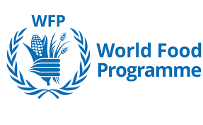 IT / Scope Data Analyst at United Nations World Food Programme