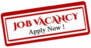 Legal Officer in a Telecommunications Servicing Comapany