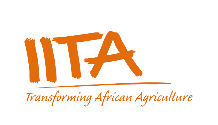 Job Opportunities at the International Institute of Tropical Agriculture