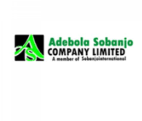 Personal Assistant / Marketer at Adebola Sobanjo Company Limited
