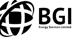 HSE Fire and Hole Watcher at BGI Energy Services Limited
